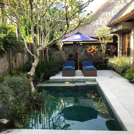 Samhita Garden: photo2.jpg