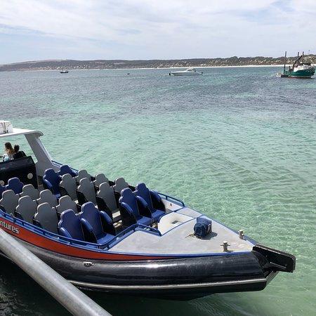Kangaroo Island Marine Adventures: photo6.jpg