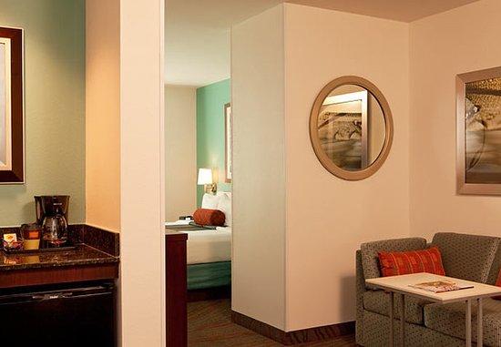 springhill suites tarrytown westchester county 98. Black Bedroom Furniture Sets. Home Design Ideas