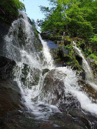 Haines Falls, État de New York : The Falls