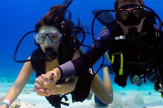 Half-Day Combo Tour with Intro to Scuba and Cozumel Tour