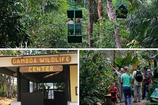 Sloth Sanctuary and Nature Labs