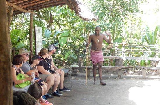 Vanuatu Shore Excursion: Full-Day...