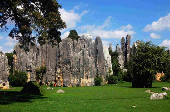 Full-Day Stone Forest and Jiuxiang...