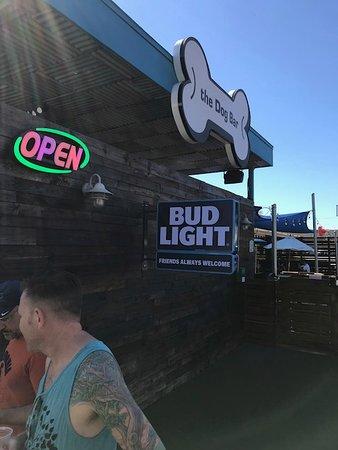 Dog Bar, Central Avenue, Grand Central District, St. Pete