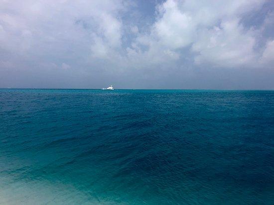 Alphonse Island Photo