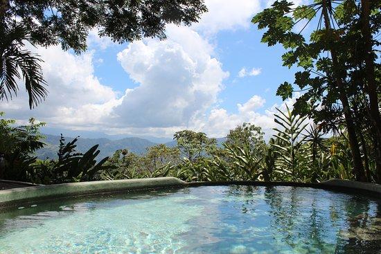 Playa Matapalo, Costa Rica: The pool view!