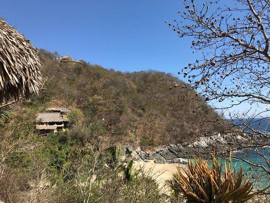 Puerto Angel Picture