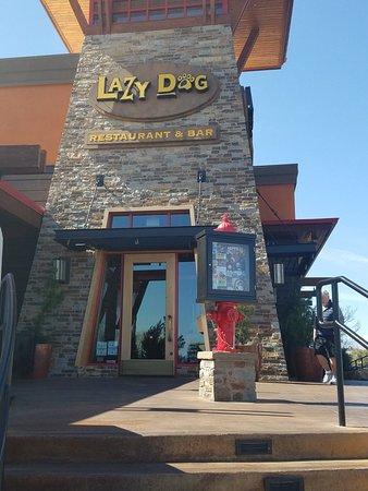 Lazy Dog Restaurant Bar Las Vegas Nv Phone Number