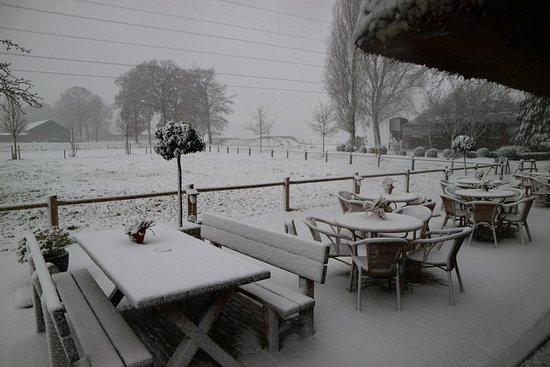 Den Heijkant: winter wonderland