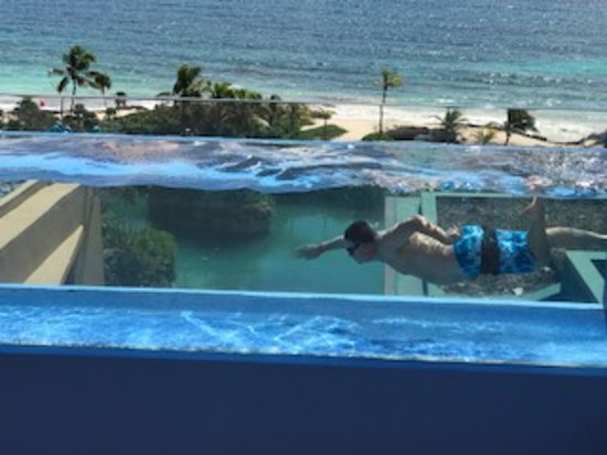 Image result for xcaret mexico bridge glass pool