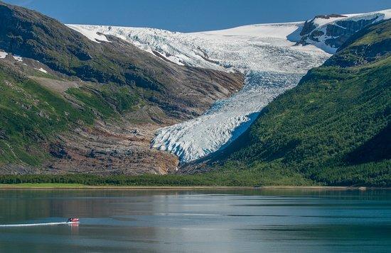 Glomfjord, Noruega: Svartisen glacier in Northern Norway. Photo: Trym Ivar Bergsmo.
