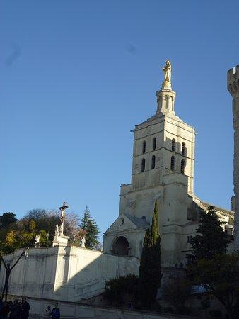 Cathédrale Notre-Dame-des-Doms : Cathedrale Notre-Dame des Doms