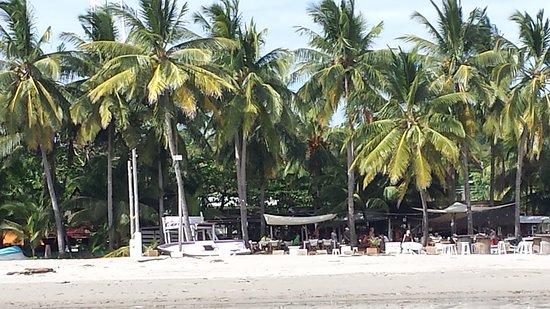 Landscape - Picture of Hotel Giada, Playa Samara - Tripadvisor