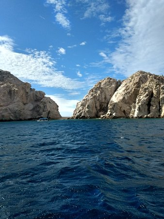 Whale Watch Cabo: IMG_20180228_092122566_HDR_large.jpg