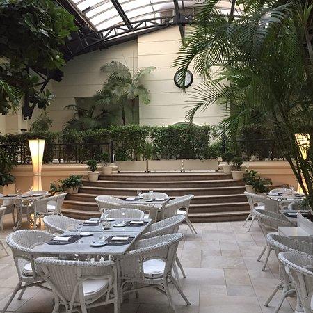 Jardin de invierno buenos aires recoleta restaurant reviews phone number photos - Jardin de invierno ...