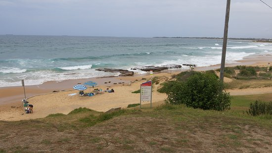 Bulli Beach Cafe: Bulli Beach from the Cafe