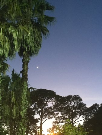 Eastpoint, FL: View of the night sky from the mini golf course