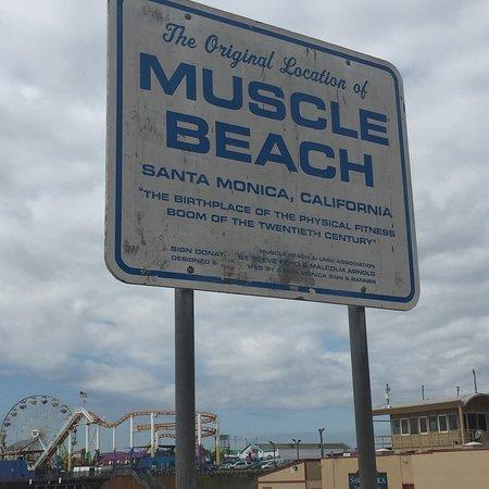 Muscle Beach: photo0.jpg