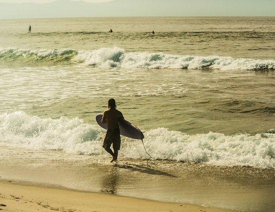 Sayulita Surf Day Camps: Pura Vida