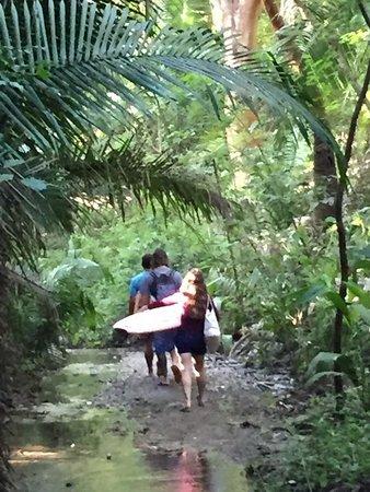 Sayulita Surf Day Camps: Adventure