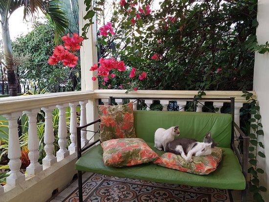 Foto de Hotel Casa 69