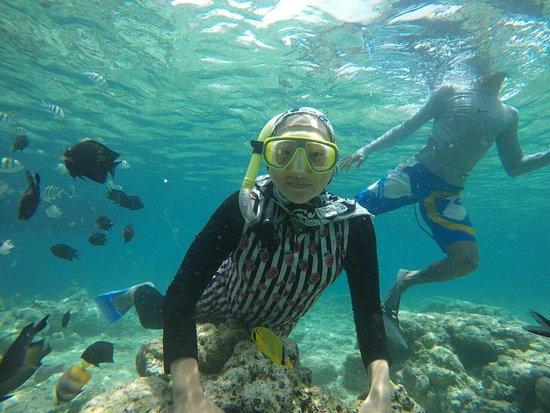 Bunaken Island, Indonesia: IMG-20180223-WA0004_large.jpg