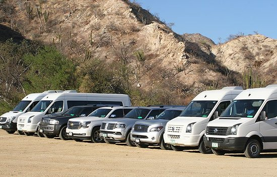 San José Del Cabo, México: Longest variety of vehicles for your specific needs
