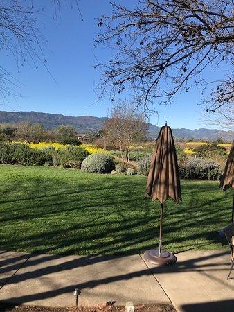 Резерфорд, Калифорния: Nice grounds.