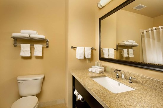Holiday Inn Express & Suites Denton - UNT - TWU: Guest room amenity