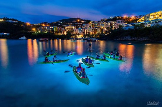Night Kayak Tour in St. Thomas