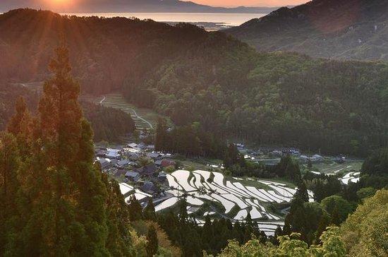 Local Cooking and Cycling Tour: Beautiful Takashima Biwa Lake and...