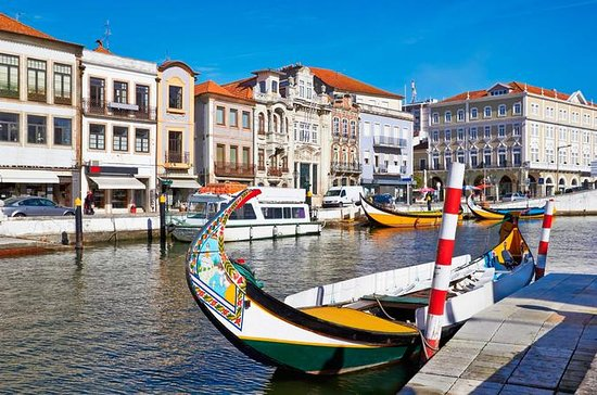 Aveiro og Bairrada Small Group Tour...