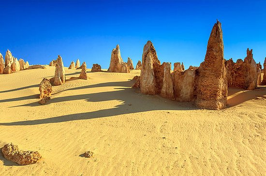 Full-Day Pinnacles Desert and Yanchep...