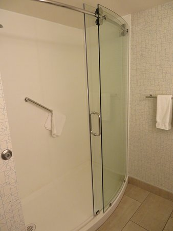 Good-sized shower in the suite bathroom.