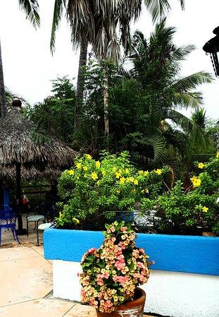 Azul Sirena Huatulco: 20180218_180837_large.jpg