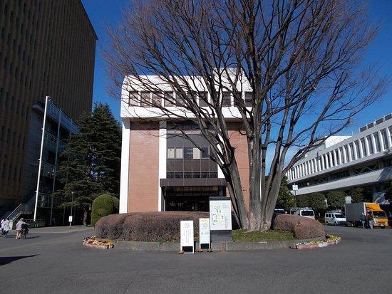 Museum of Tokyo Kasei University