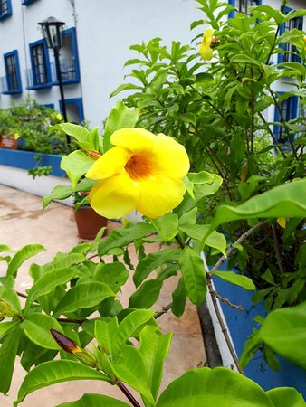 Azul Sirena Huatulco: Séjour agréable .  Trés joli hotel mexiquain . Belles et grandes chambres , literie nouvelle tré