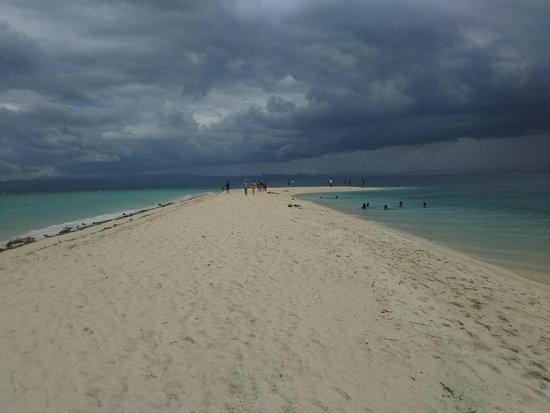 Thresher Shark Divers: ツアーで他の島へも