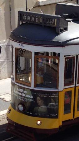 Interno Tram 28 Tram 28 Tripadvisor