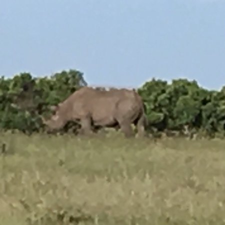 F. King Tours and Safaris - Day Tours: photo9.jpg