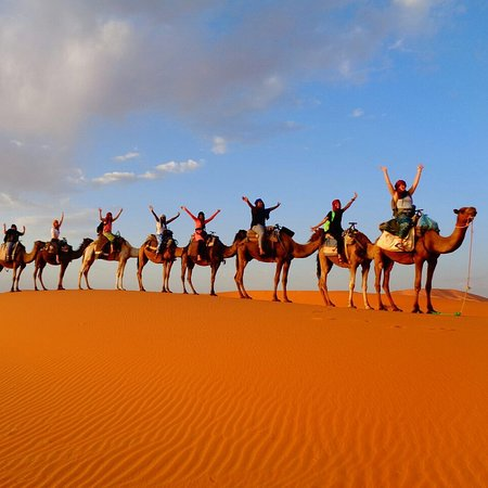 Things To Do in Sahara Trips, Restaurants in Sahara Trips