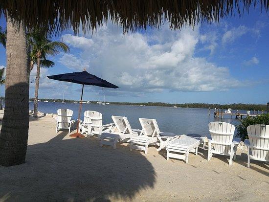 Coconut Palm Inn: IMG_20180228_084108_large.jpg
