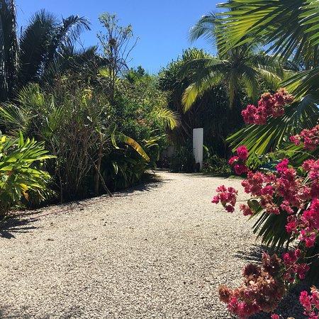 Hotel Horizontes de Montezuma: photo5.jpg