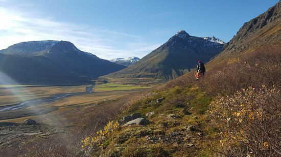 Рейдарфьордур, Исландия: Hiking up to Grænafell Mountain. It is just a fantastic hike :)