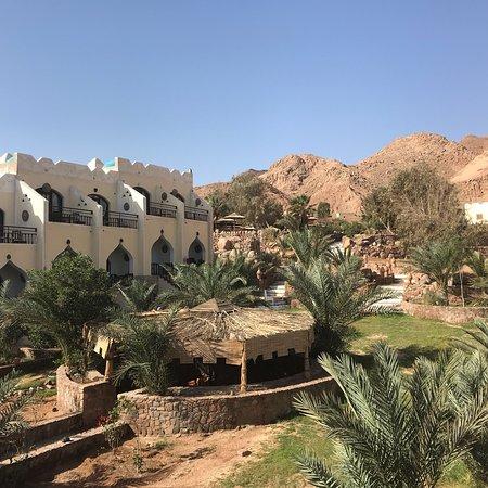 The Bedouin Moon Hotel: photo3.jpg