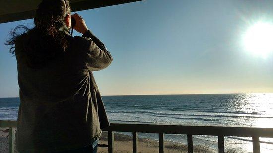 Cavalier Oceanfront Resort รูปภาพ