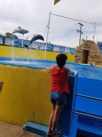 Splash Water Park : 20180224_161309_large.jpg