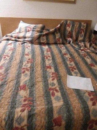 Motel Durango: Resized952018030295124150_large.jpg