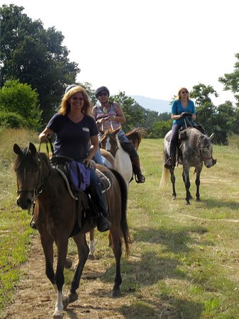 Stanley, Βιρτζίνια: Some highlights of the Jordan Hollow Trail Rides